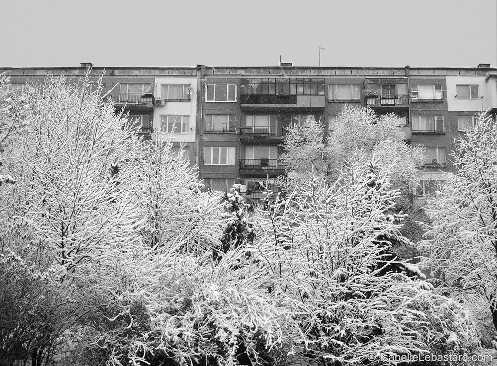 Les saisons à la fenêtre